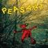 Richard Dawson - Peasant (Black Vinyl)