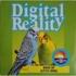 Digital Reality - Wake Up (Little Bird)