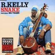 R. Kelly - Snake (Remix)