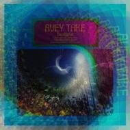 Avey Tare (Animal Collective) - Eucalyptus