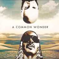 Common vs. Stevie Wonder - Common Wonder