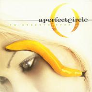 A Perfect Circle - Thirteenth Step (Black Vinyl)