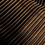 Jesse Koolhaas - Click Me