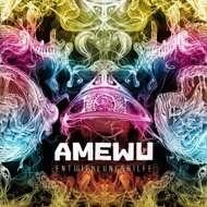 Amewu - Entwicklungshilfe