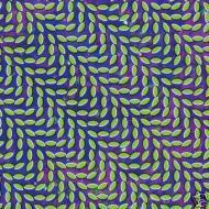Animal Collective (Avey Tare, Panda Bear & Geologist) - Merriweather Post Pavilion