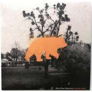 Black Bear Basement - Beyond Traits (Orange Vinyl)