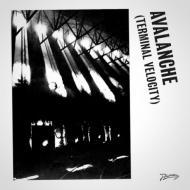 Boys Noize & Erol Alkan - Avalanche (Terminal Velocity)