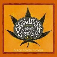 Brant Bjork And The Low Desert Punk Band - Black Power Flower (Black Vinyl)