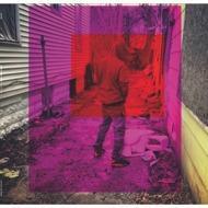 Camoflauge Monk - Last Real Nikka (Tape)