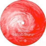 Cro-Magnon - Riding The Storm - Idjut Boys Remixes