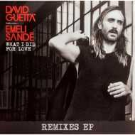 David Guetta - What I Did For Love (Remixes EP)