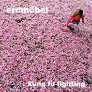 Erdmöbel - Kung Fu Fighting