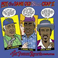 Various - Not The Same Old Blues Crap II