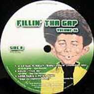 Various - Fillin' Tha Gap Volume 16