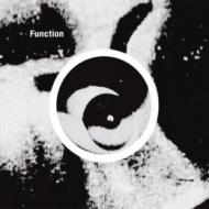 Function  - Gradient
