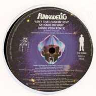 Funkadelic - Ain't That Funkin Kind Hard On You?