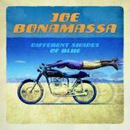 Joe Bonamassa - Different Shades Of Blue