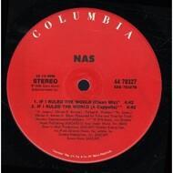 Nas - If I Ruled The World