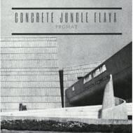 PRGMAT - Concrete Jungle Flava