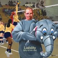 Prof - Liability (Yellow & Blue Vinyl)