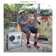 DJ Harrison - HazyMoods