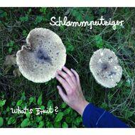 Schlammpeitziger - What's Fruit