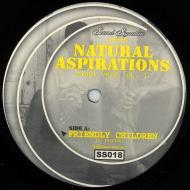 Theo Parrish - Natural Aspirations (Vinyl Vers. Pt. 1)