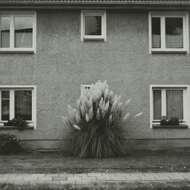 Timboletti - Hintersee EP