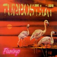 Turbostaat - Flamingo