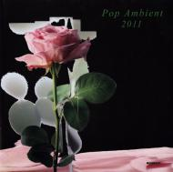 Various - Pop Ambient 2011