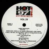 Various - HOT 97FM Vol. 29