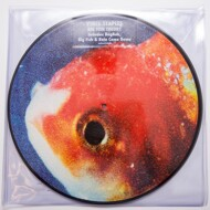 Vince Staples - Big Fish Theory (Picture Disc)