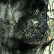 Yann Tiersen - The Waltz Of The Monsters (La Valse Des Monstres)